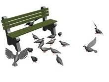 pigeons_t